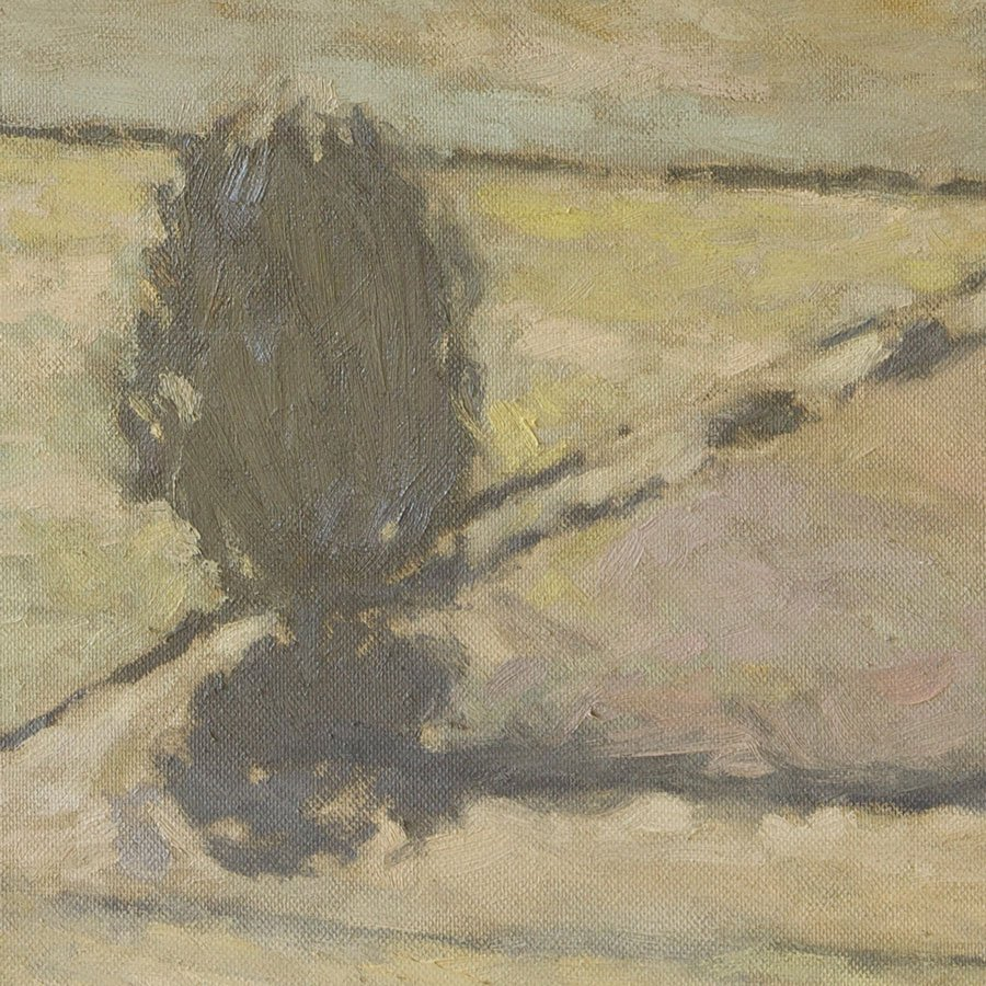 Valle di Fimon, particolare, olio su tela, cm. 40 x 40